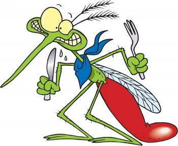 دانستنی ها گوناگون  , دانستنی هایی درباره پشه ها