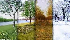 سرگرمی فال و طالع بینی  , فال فصل ها و رنگ ها