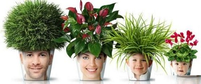 گلدانهای مبتکرانه برای تزیین خانه