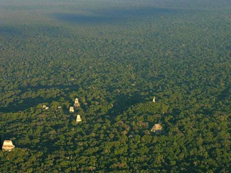 جاذبه های سایر کشورها گردشگری  , جنگل تیکال ، رازآلود و تاریخی