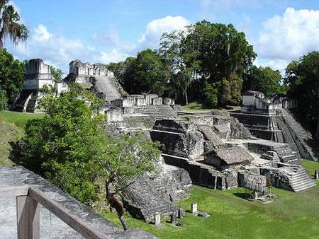 رمز و راز جنگل تیکال در گواتمالا +عکس
