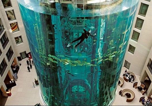 آسانسوری در میان آکواریوم (عکس)