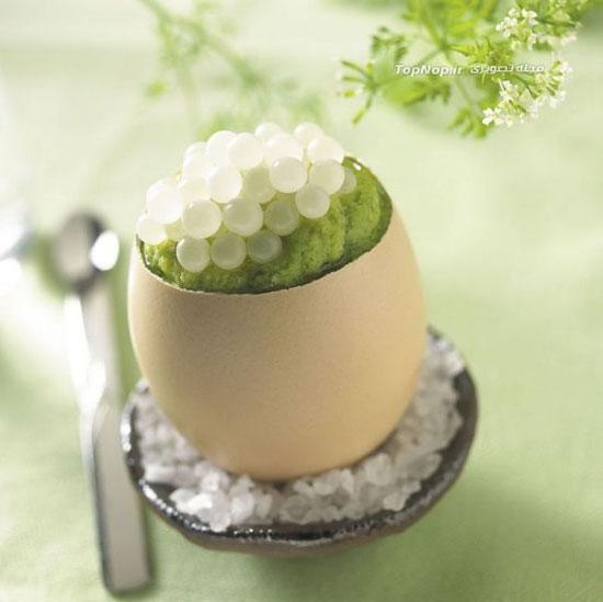 تخم حلزون، غذایی لذیذ و گرانقیمت +عکس