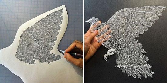 مجسمه های کاغذی بسیار زیبا +عکس