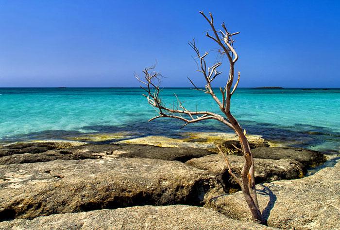 nature-crete-photos (1)