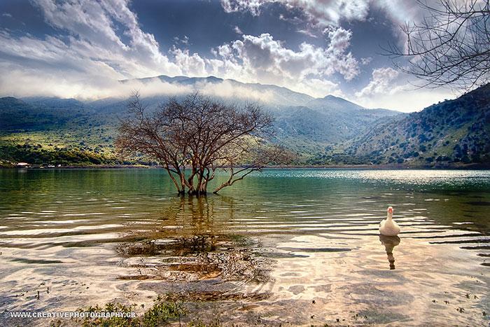 nature-crete-photos (12)