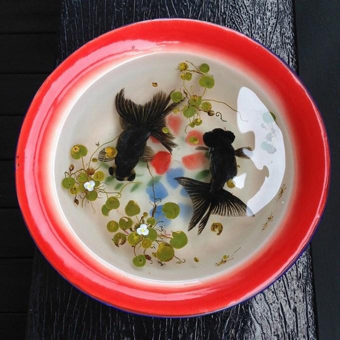 realistic-3d-sea-animals-resin-keng-lye-12-620x620