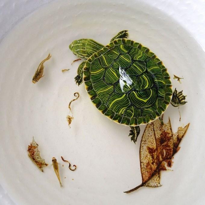 realistic-3d-sea-animals-resin-keng-lye-5-620x620