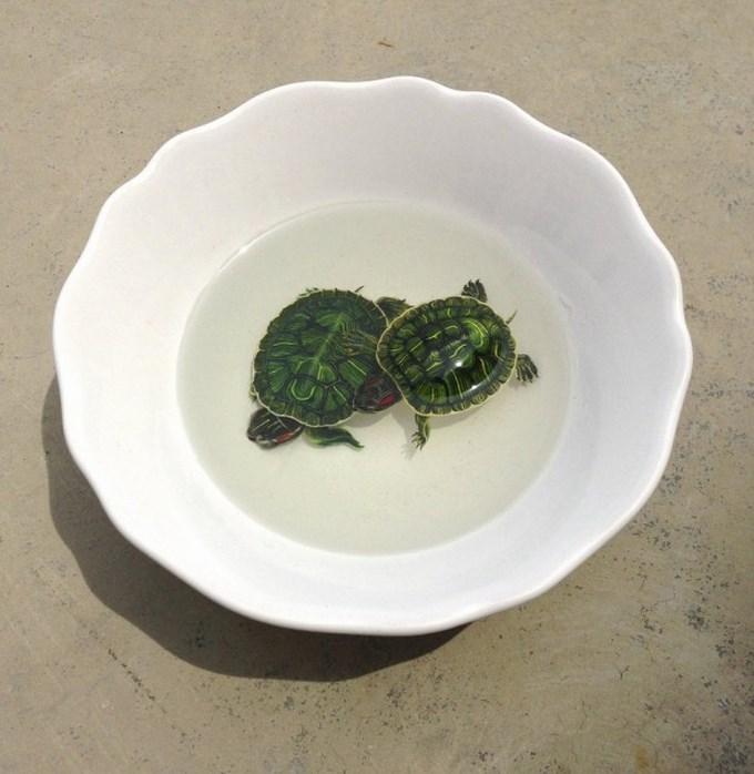 turtles_by_kenglye-d636nk8-620x636