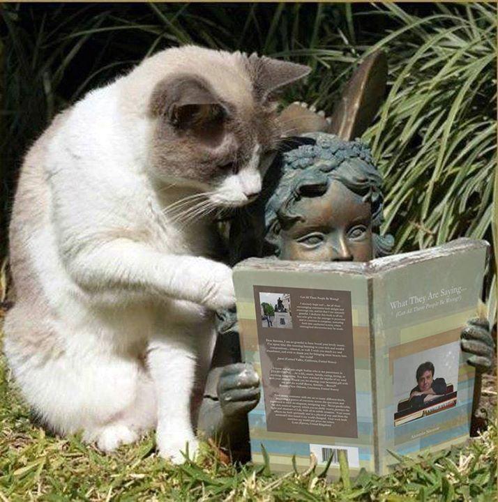 حیوانات - گربه