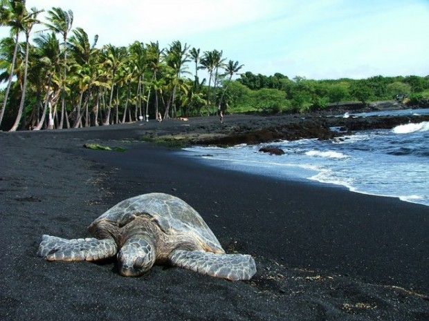 amazing-unusual-beaches-6-2-660x495