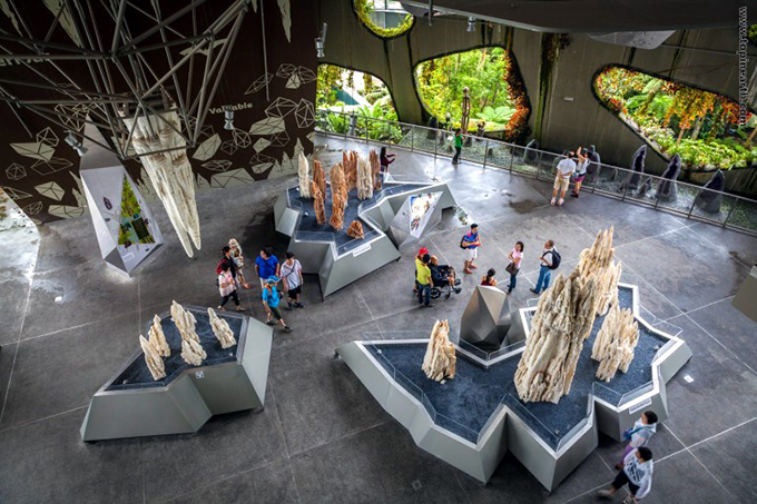 singapore-gardens-by-the-bay-supertree-cloud-forest-15