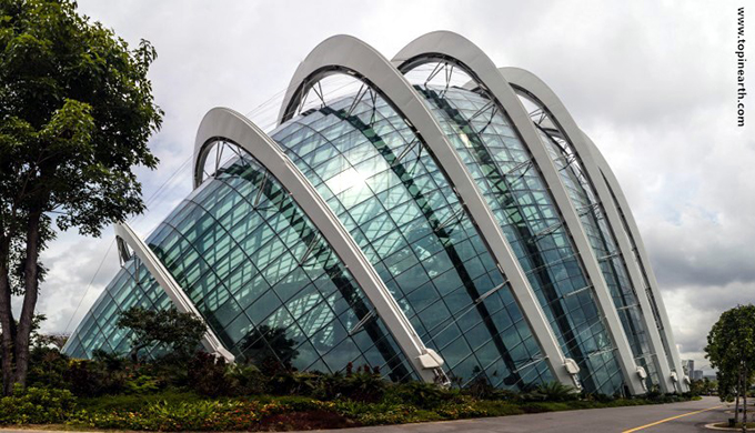 singapore-gardens-by-the-bay-supertree-cloud-forest-17
