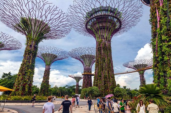 جاذبه های سایر کشورها گردشگری  , باغی حیرت انگیز در سنگاپور