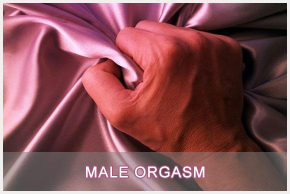 مراحل فعالیت جنسی مردان