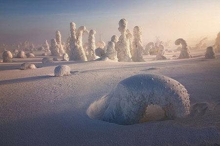 جاذبه های سایر کشورها گردشگری  , جنگل یخ زده در فنلاند