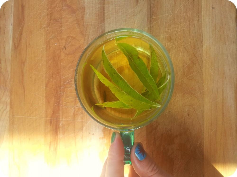 نوشیدنی ها  , طرز تهیه دمنوش به لیمو (ورون)