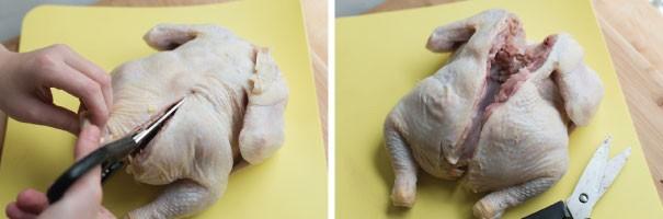 مرغ بریان پروانه ای شده با چاشنی رزماری