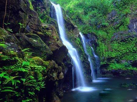 جزیره مائویی,تصاویر جزیره مائویی,عکس های جزیره مائویی