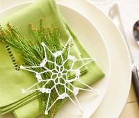 ایده هایی برای تزیین دستمال سفره شیک برای مهمانی های رسمی