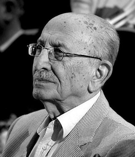 بیوگرافی دانستنی ها  , بیوگرافی مرتضی احمدی + عکس
