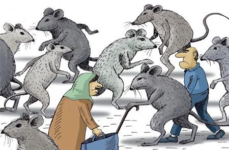 کاریکاتـور ازدیاد موش های تهران, موش های تهران, کاریکاتـور و تصاویر طنز, عکس های خنده دار, حمله موش ها به تهران, کاریکاتـور تهران و موش, کاریکاتـورهای خنده دار, کاریکاتـور موش های تهران, مطالب طنز و خنده دار, کاریکاتـور جدید