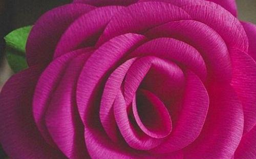 آموزش ساخت گل رز کاغذی