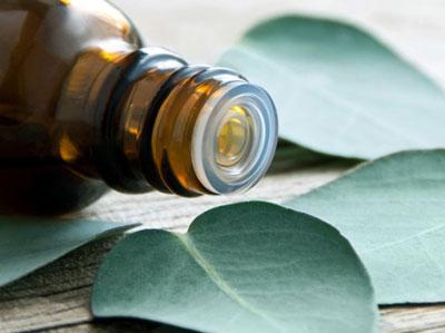پزشکی و سلامت طب سنتی و اسلامی  , ضدعفونی کننده های طبیعی