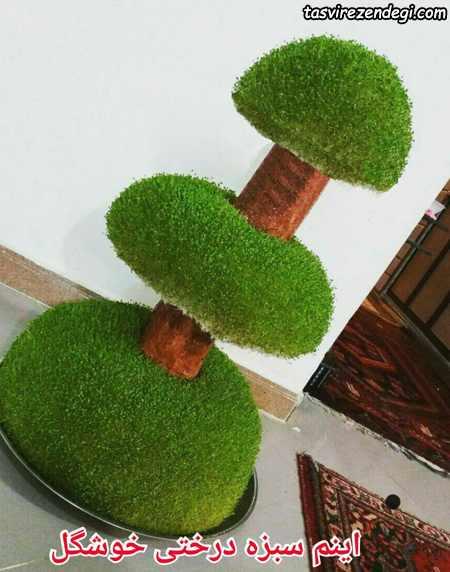 سبزه درختچه سه طبقه