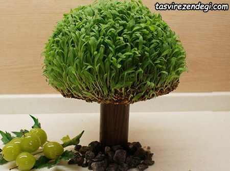 کاشت سبزه درختچه