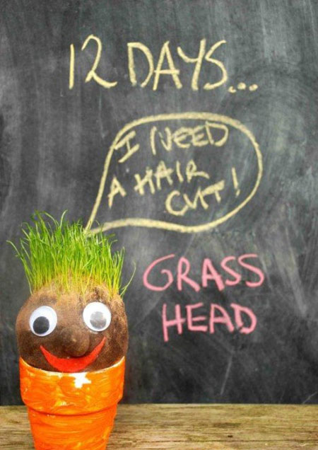 آموزش کاشت سبزه به شکل آدمک, سبزه نوروز, سبزه عید,سبزه, سبزه هفت سین,سبزه آدمکی , تزیین هفت سین