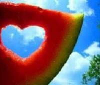 زندگی مشترک, آغاز زندگی مشترک, مسایل زوجین, اختلاف هایی که میان زوج ها, روابط خانوادگی, تاثیر قاچ هندوانه در زناشویی