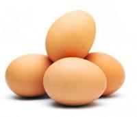 تخم,مرغ,بیضی,شکل,هستند,دانیم,پرندگان,خوابند,جوجه,بیرون,بیایند,تخمها,محکم,باشند,وزن,پرندهء,خوابیده,باعث,شکستن,نشود,جهت,کاملاً,حساب,بتواند,شکسته