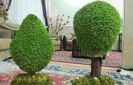 آموزش درست کردن سبزه به شکل درخت,کاشت سبزه