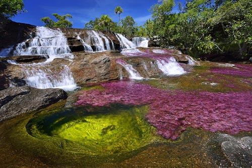 کانو کریستالز زیباترین رودخانه جهان