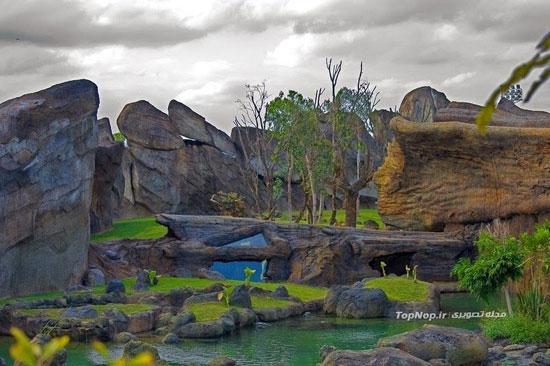 باغ وحش استثنایی در والنسیا +عکس