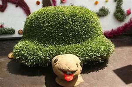 سبزه سفره هفت سین - مدل سبزه - تزیین هفت سین