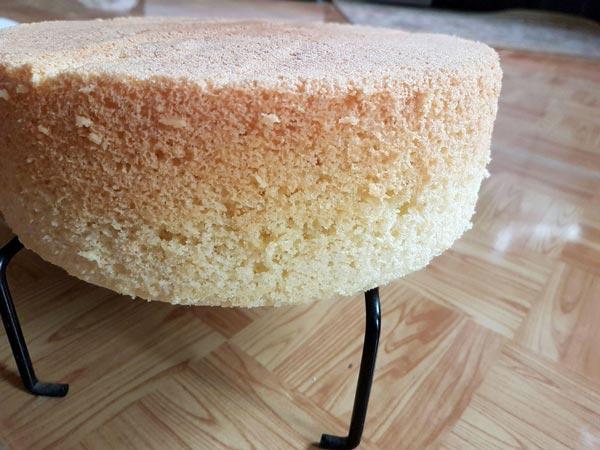 کیک شیفون وانیلی