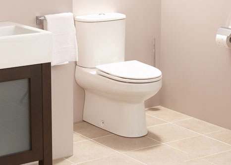 توالت فرنگی و بیماری های مقاربتی