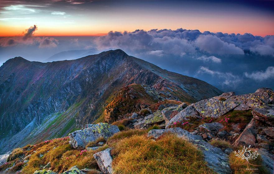عکس - ترانسیلوانیا - دیدنی های جهان - طبیعت زیبا - کوهستان های Maramures - رومانی - کوهستان کارپتیان
