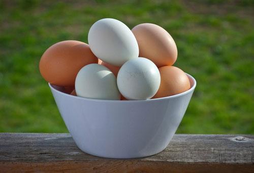روش تشخیص سالم بودن تخم مرغ - روش تشخیص تازه بودن تخم مرغ