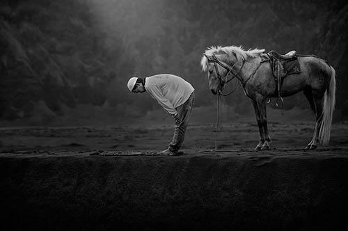 گزیده تصاویر فینال مسابقه عکاسی سونی 2015