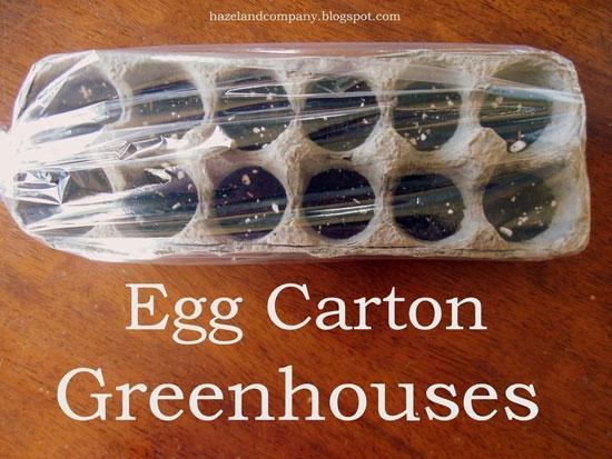 آموزش هنرهای دستی  , ایده های ساخت کاردستی با شانه تخم مرغ