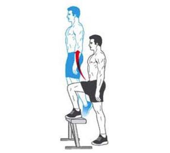سفت کردن عضلات شکم, تقویت عضلات ران, ورزش, تقویت عضلات شکم