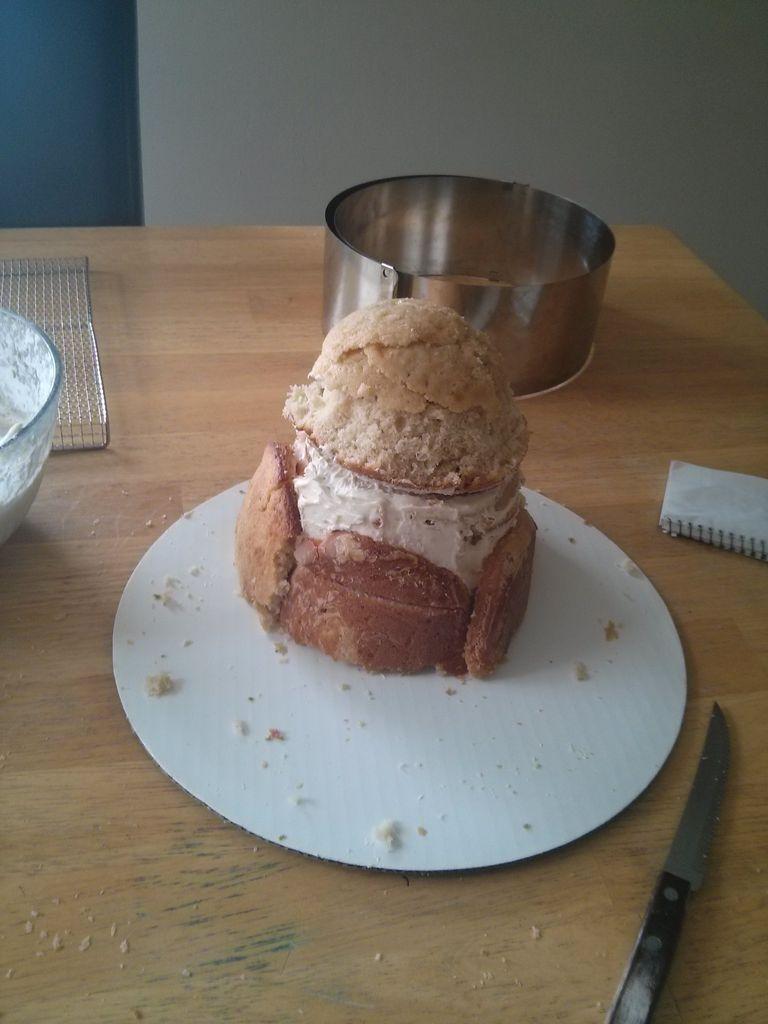 تزئین کیک به شکل گربه - تزیین کیک تولد