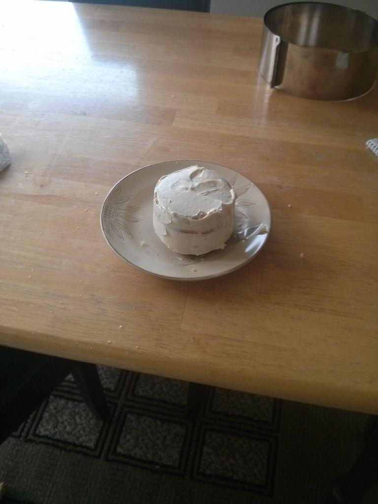 تزئین کیک به شکل گربه - آموزش تزیین کیک تولد