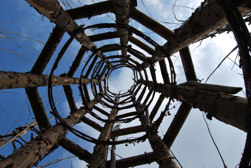 کلیسای جامع درختی یا کتدراله وِجیتاله - معماری طبیعی