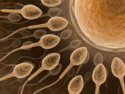ناباروری مردان - افزایش احتمال باروری مردان - سلامت اسپرم
