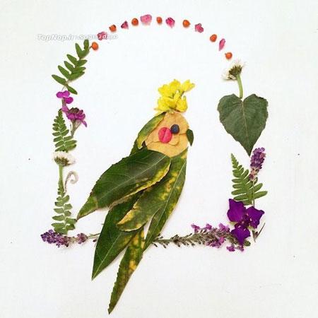 هنرنمایی با گلبرگ و برگ - نقاشی با گل و برگ - Flora Borager