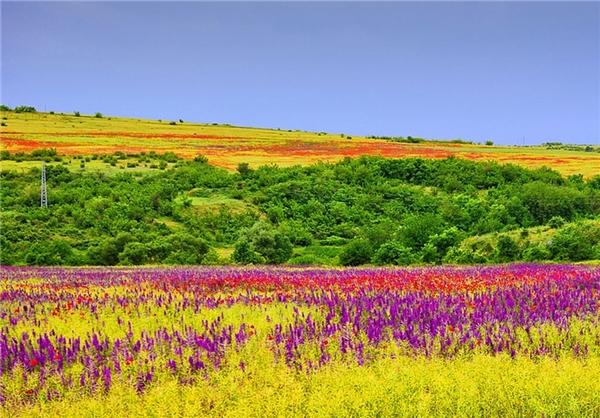 عکس مناظر زیبای بهاری - طبیعت در بهار - عکس های دیدنی و زیبا
